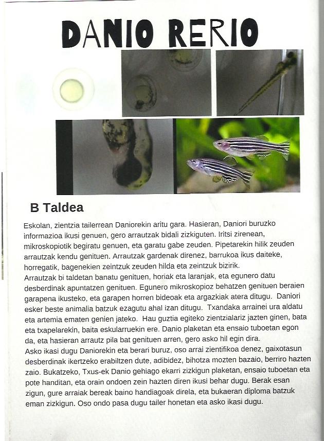 Periódico Igueldo1 Proyectos de ciencia para niños