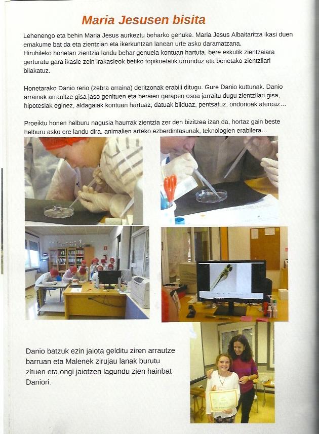 Redacción Igeldo 3 Proyectos de ciencia para niños