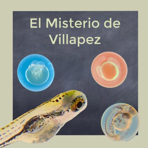 Talleres de ciencia para niños Alicante