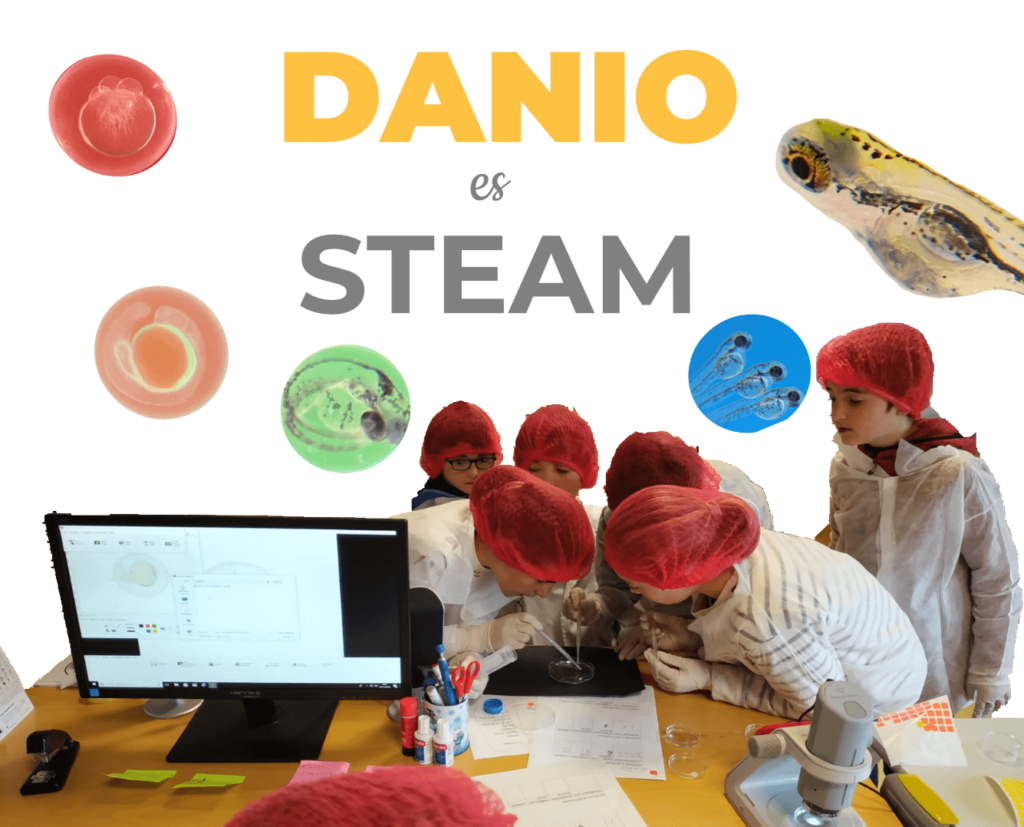 Proyectos STEAM