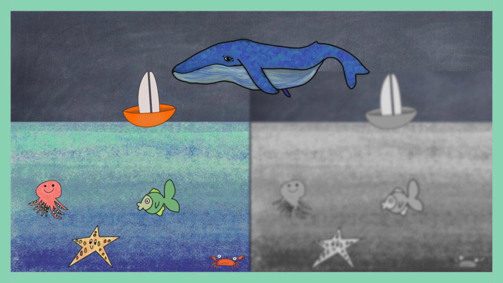 cómo ven las ballenas